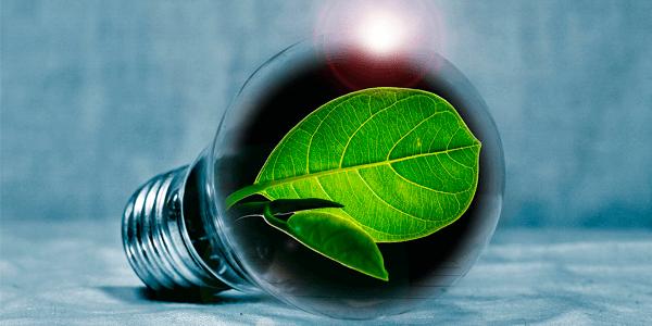 La sustenibilidad